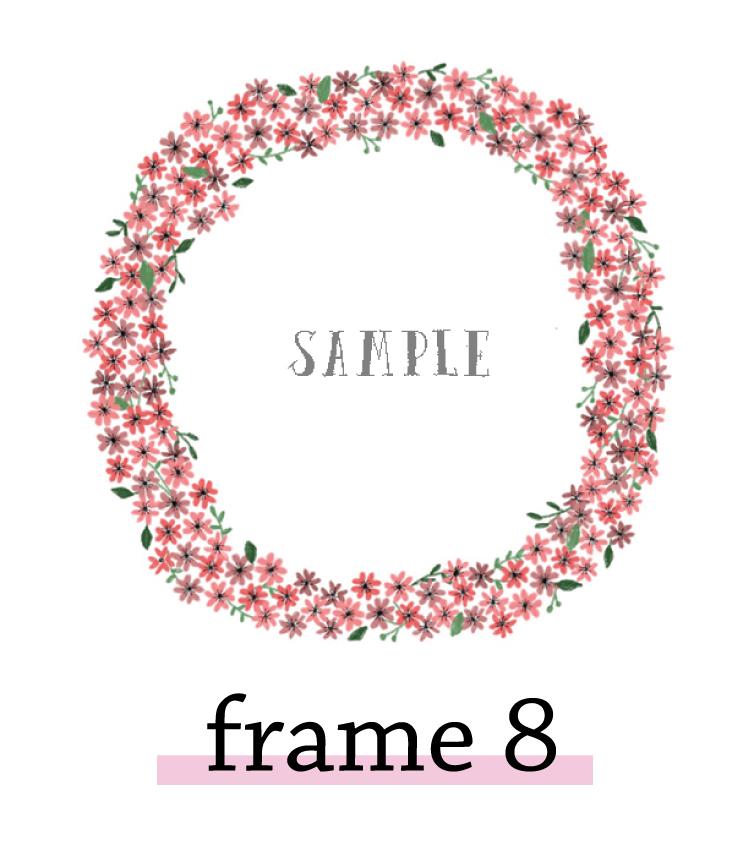 frame8